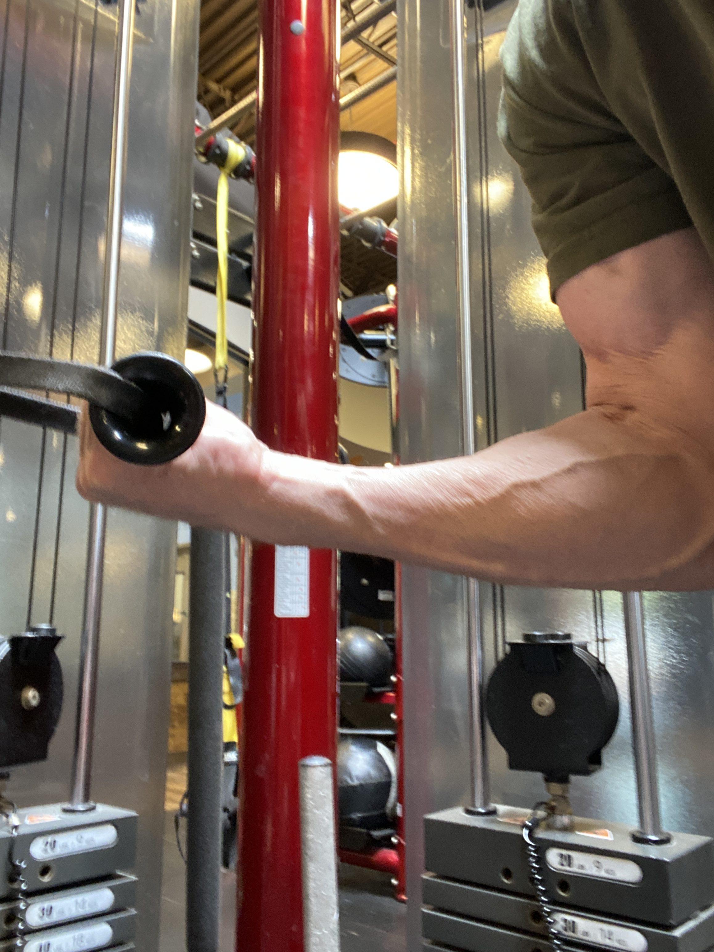 Triceps Cable Kickback grip variation